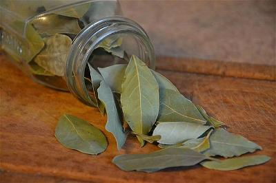 bay leaves' value in cooking-zenmoon
