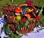 fruit-basket-391414-640